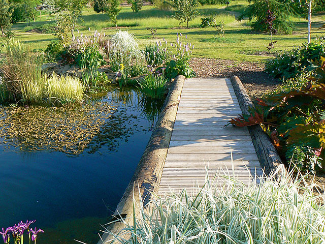 The Wildlife Pond- River Barn Garden Malmesbury