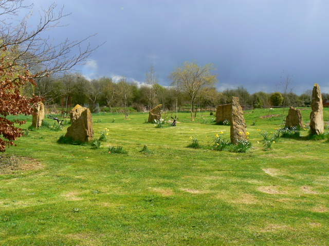 stone circle, daffodills