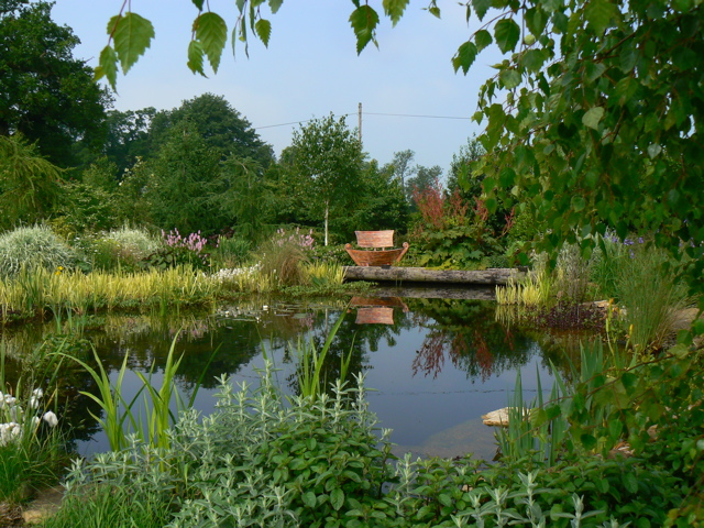 wildlife pond, unussual bench