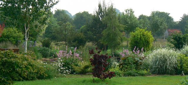 setting of wildlife pond