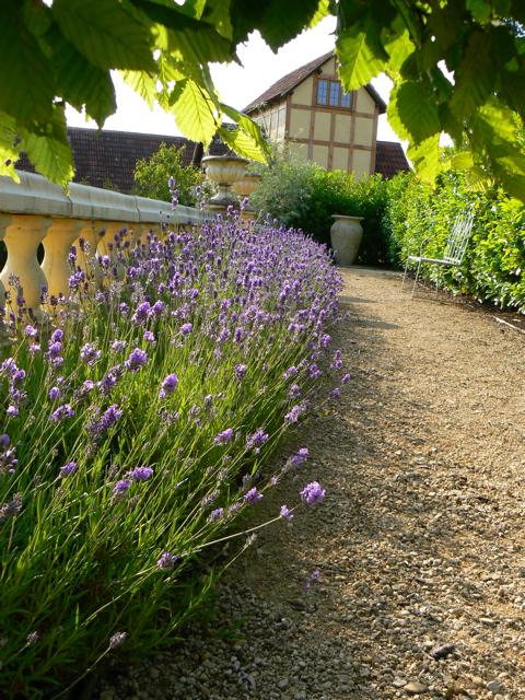 lavender, ballustrade